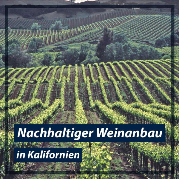 Nachhaltiger-Weinanbau-in-Kalifornien