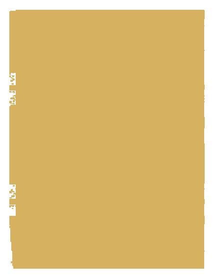 Robert König